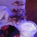 catering-food8