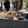 catering-food81