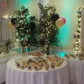 catering-food31