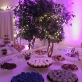 catering-food35