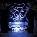 ice-sculpture11